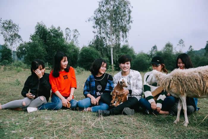 Trại Cừu Yên Thành Nghệ An